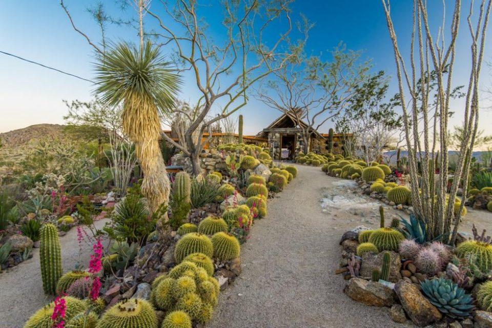 Joshua Tree Mojave Rock Ranch!